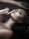 Sweet Passion Escort Agentur